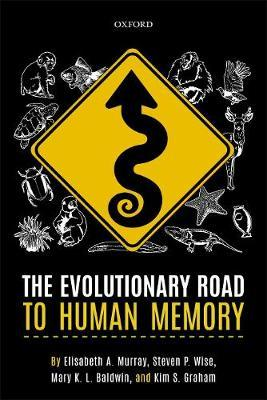 Image for The Evolutionary Road to Human Memory from emkaSi