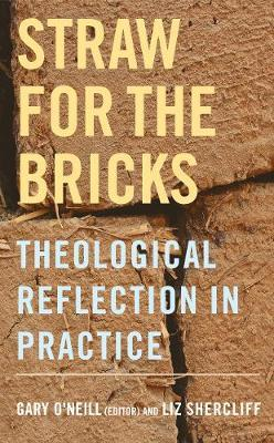 Image for Straw for the Bricks: Theological Reflection in Practice from emkaSi