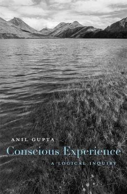 Image for Conscious Experience - A Logical Inquiry from emkaSi