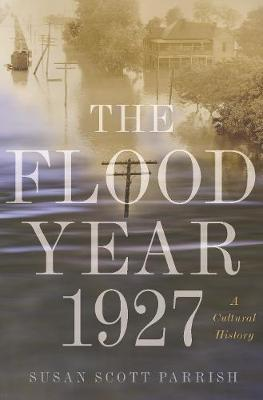 Image for The Flood Year 1927 - A Cultural History from emkaSi