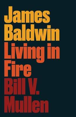 Image for James Baldwin - Living in Fire from emkaSi