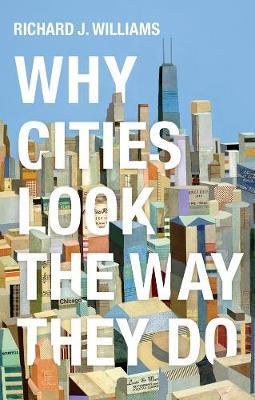 Image for Why Cities Look the Way They Do from emkaSi