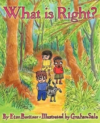 Image for What is Right? from emkaSi