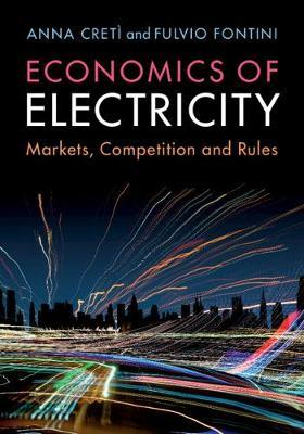 Image for Economics of Electricity - Markets, Competition and Rules from emkaSi