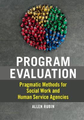 Image for Program Evaluation - Pragmatic Methods for Social Work and Human Service Agencies from emkaSi