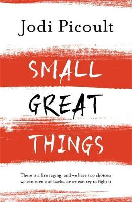 Image for Small Great Things: 'To Kill a Mockingbird for the 21st Century' from emkaSi