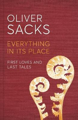 Image for Everything in its Place - First Loves and Last Tales from emkaSi
