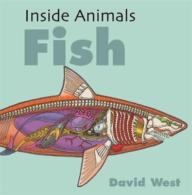 Image for Inside Animals: Fish from emkaSi