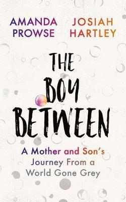 Image for The Boy Between - A Mother and Son's Journey From a World Gone Grey from emkaSi