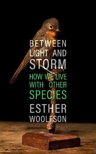 Image for Between Light and Storm - How We Live With Other Species from emkaSi