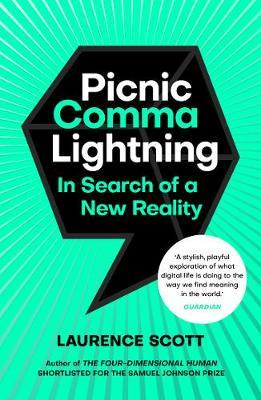 Image for Picnic Comma Lightning - In Search of a New Reality from emkaSi