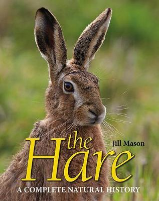 Image for The Hare - A complete natural history from emkaSi