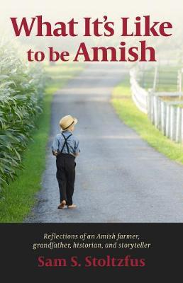 Image for What It's Like to Be Amish from emkaSi