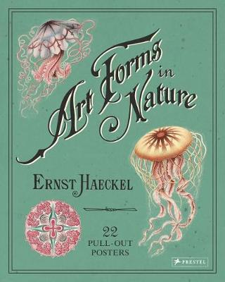 Image for Ernst Haeckel: Art Forms in Nature: 22 Pull-Out Posters from emkaSi