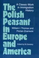 Image for The Polish Peasant in Europe and America: A Classic Work in Immigration History from emkaSi