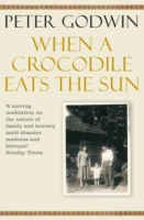 Image for When a Crocodile Eats the Sun from emkaSi