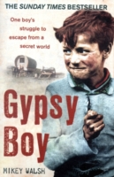 Image for Gypsy Boy: The bestselling memoir of a Romany childhood from emkaSi