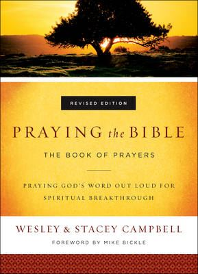 Image for Praying the Bible: The Book of Prayers from emkaSi