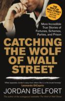 Image for Catching the Wolf of Wall Street: More Incredible True Stories of Fortunes, Schemes, Parties, and Prison from emkaSi