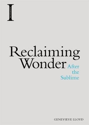 Image for Reclaiming Wonder - After the Sublime from emkaSi