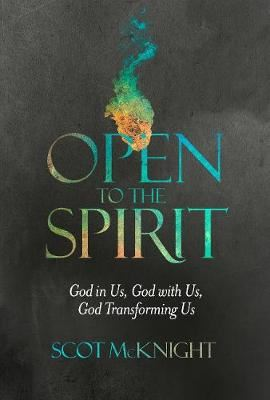 Image for Open to the Spirit: God in Us, God with Us, God Transforming Us from emkaSi