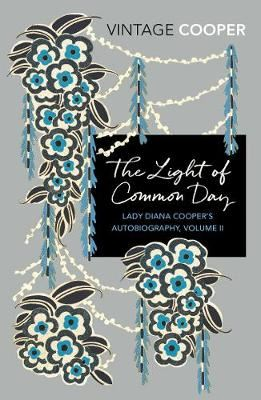Image for The Light of Common Day from emkaSi