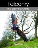 Image for Falconry: The Essential Guide from emkaSi