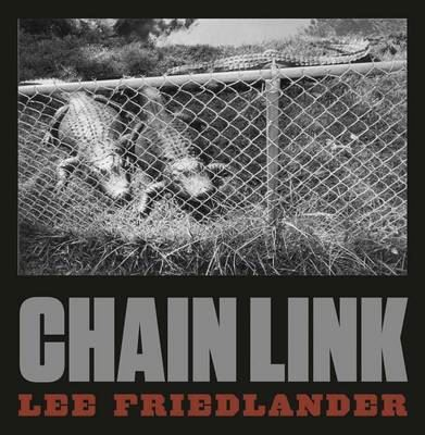 Image for Lee Friedlander: Chain Link from emkaSi
