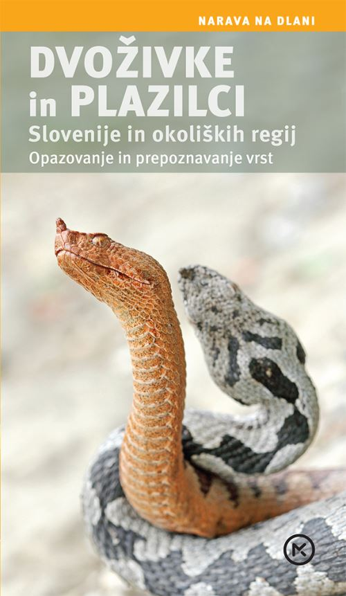 Image for Dvoživke in plazilci Slovenije in okoliških regij from emkaSi