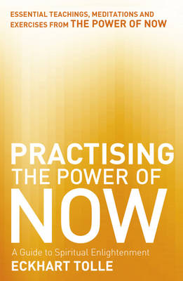Image for Practising the Power of Now from emkaSi